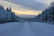 canvas print picture - road in winter
