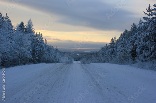 canvas print picture road in winter