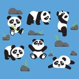 Panda Cartoon Design Vector