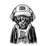 Cat to headphones dressed in the hoodie. Vintage black engraving