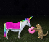 The cat is feeding its unicorn with a big pink donut in the meadow at night. Stars background.