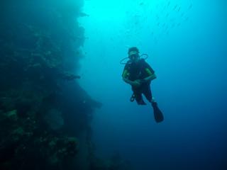 plongeur © Eléonore H