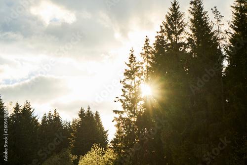 canvas print picture Schöner Sonnenuntergang