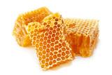 Honeycomb slice closeup on white