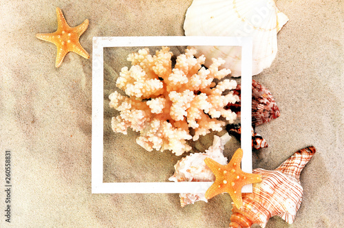Top view of Beach sand with shells, coral and starfish. Summer background concept. © Belight