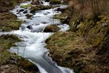 Fototapeta Bathroom - Górski strumyk wodny © Andrew Sk