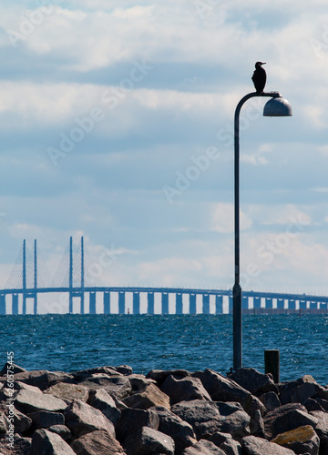 pier on the sea and a bridge  © Maria