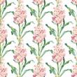Watercolor pink garden matthiola flower seamless pattern on white background. Elegant botanical drawing for decor, wallpaper, textile design. - 260577680