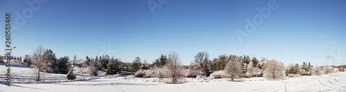 Winter in der Uckermark - 260588468