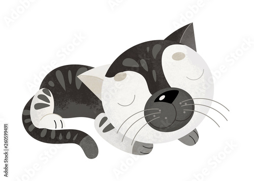 cartoon scene with cat on white background - illustration for children - 260599491