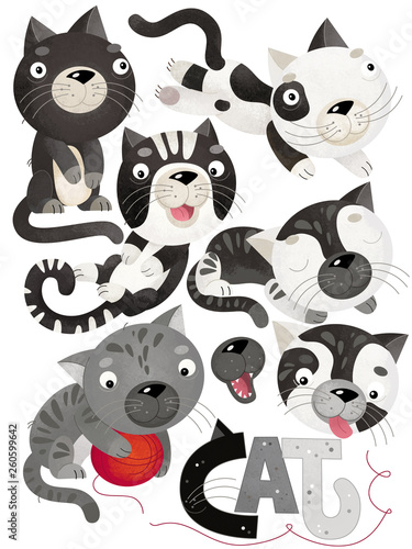 cartoon scene with cat set on white background - illustration for children - 260599642