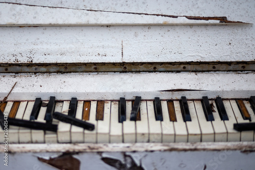 canvas print picture Old vintage white piano in a forest