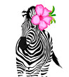 Zebra with pink flower. Wild animal texture. Striped black and white. Vector illustration isolated on white background.