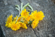 closeup of yellow wild flowers dandelions bouquet on wooden bench - 260680446