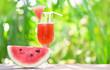 Leinwandbild Motiv Watermelon juice summer with piece watermelon fruit on glass on nature green background