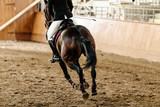 Fototapeta Fototapety z końmi - back horseman on horse riding arena with sand © sportpoint
