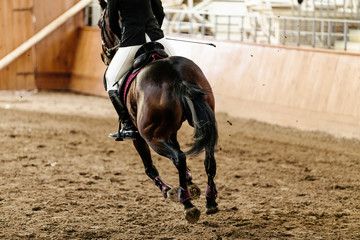 back horseman on horse riding arena with sand