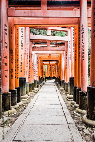 Fushimi Inari Taisha Shrine torii gates in Kyoto, Japan. © atosan