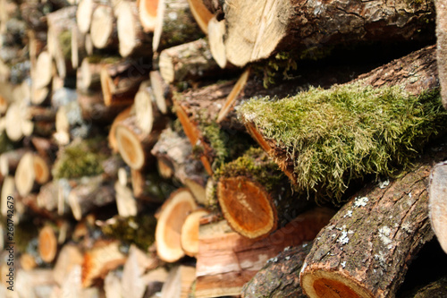canvas print picture Holzstapel