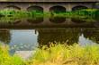 jetty and bridge, reflection in water in nature park Bossche Broek in Den Bosch, 's Hertogenbosch, The Netherlands
