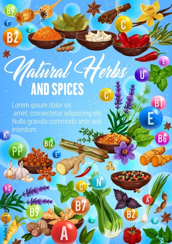 Organic spices, culinary herbs seasonings sketch © Vector Tradition