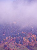 Góry Carpatian we mgle