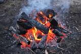 fire, flame, bonfire
