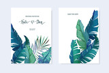Exotic tropical palm tree. Frame border background. Summer vector illustration. Template set for card. Watercolor style - 260817079