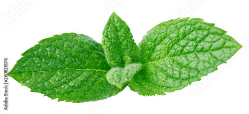 Leinwandbild Motiv Fresh mint isolated Clipping Path