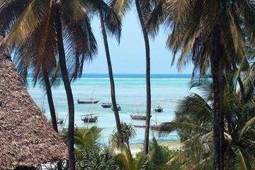 Ocean view through palm trees