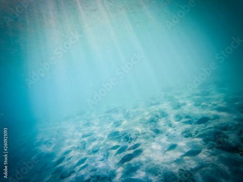 tropical blue ocean underwater background - luxury nature pattern