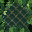 green ecology natural