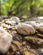 Quadro Stones in the mountain river in the spring