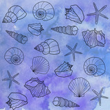 Seashells on a watercolor background - 261000408