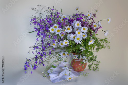 Still life with daisies in a clay vase on a white background © falvera