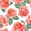 Seamless pattern with flowers and leaves. Delicate floral background with roses - 261009455