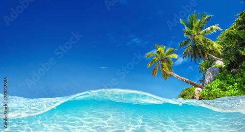 Leinwanddruck Bild  Seychelles Islands. Palm Beach In Tropical Paradise