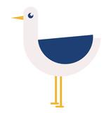 Seagull flat illustration