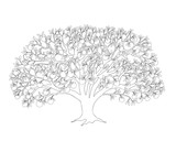 apple tree with leaves and apples black outline