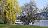 jardin public en bordure du lac