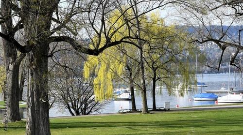 canvas print picture jardin public en bordure du lac