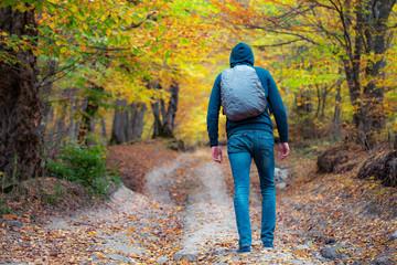 .traveler man in autumn forest