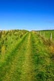 Walking Path in Northern Ireland