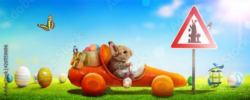 Osterhase unterwegs zum Osterfest! - 261158686