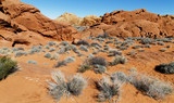 Valley of Fire Panorama