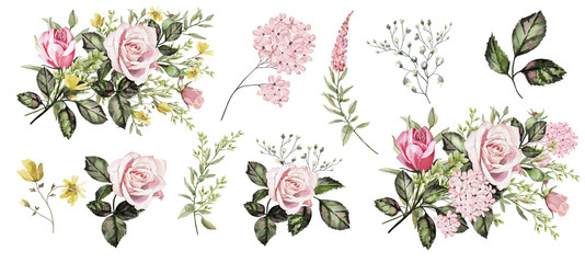 Watercolor illustration. Botanical collection. Set of wild and garden flowers.  Leaves,flowers, pink roses and other natural elements. © Erenai