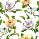 watercolor pattern magnolia flowers, white magnolia, pink and yellow magnolia seamless vintage pattern on white
