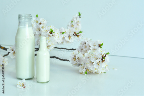 Two bottles of fresh milk with apricot flowers on  white background. Fresh milk from the farm. Dairy product.
