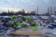canvas print picture - Ecology of Ukraine. Nature near Ukrainian capital.Environmental contamination. Illegal junk dump. Near Kiev, Ukraine