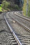 vias de tren en curva
